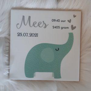 Geboortetegeltje met olifantje mint